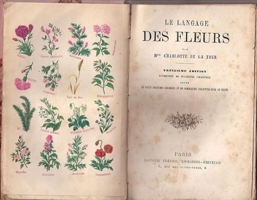 Le-Langage-Des-Fleurs-Livre-ancien-847685443_L